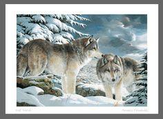 Wolf Watch- Amneris Fernandez capandwinndevon.com