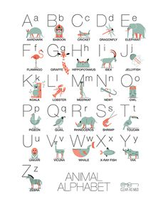 Animal Illustration #icon #icons #icondesign #iconography #iconset #iconic #iconaday #pictogram #picto #piktogramm #symbol #sign #embleme #mark #brand #branding #identity #visualdesign #glyph #graphicdesign #markendesign #logotype #logodesign #illustration #illustree #minimal #geometric #designspiration #animal