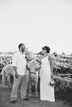 49 Best Wedding In Hvar Croatia Images Beach Club Beach Weddings