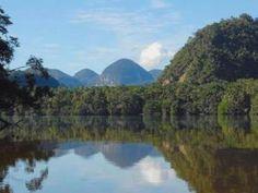 7 Atracciones en Tingo María: El Parque Nacional Cordillera Azul