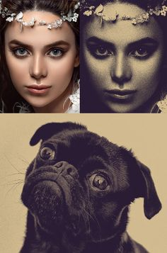 Video Tutorial: Distressed Halftone & Engraved Photo Effects Photoshop Video, Effects Photoshop, Pug Photos, Engraving Illustration, Photo Engraving, Black Pug, Graphic Design Tutorials, Photo Effects, Image