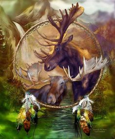 ~In the past shamans were the keepers of the sacred knowledge of life. These individuals were tied to the rhythms and forces of Nature. They were capable of walking the threads that link the invisible and visible worlds. They helped people remember that all trees are divne and that all animals speak to those that listen..~♥ ~Animal Speak~ *Artist: The Art Of Carol Cavalaris