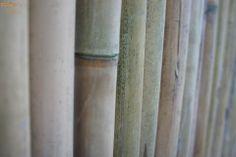 Bamboo divider at Gate 3 of DLSU-D Cavite, Philippines Fashion Quotes, Philippines, Gate, Bamboo, Divider, Artwork, Photography, Home Decor, Work Of Art