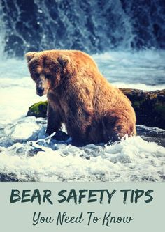 Are you prepared if you stumble upon an aggressive bear in the outdoors? If prepared, you can handle anything the outdoors throws your way. Watch this video to learn the precautions you should take when heading into the great outdoors. Bear Safety Tips You Need to Know http://www.active.com/outdoors/articles/bear-safety-tips-you-need-to-know-video?cmp=17N-PB33-S13-T6---1102