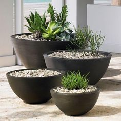 Black Grooved Bowl Planters
