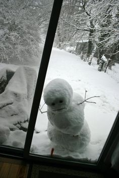 """Let me in! It's freaking cold out here!"""
