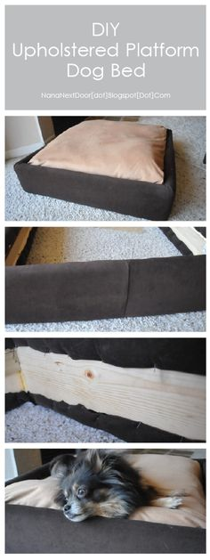 DIY Upholstered Dog Bed