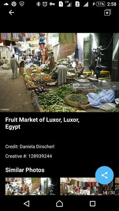 Street Vendor, Cairo Egypt, Luxor, Egyptian, World, Travel, The World, Viajes, Destinations