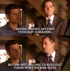 Wood thieves. My first thought is beavers...but I'm not willing to rule out those pesky keebler elves.
