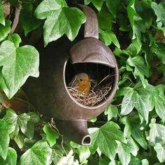 Bird House Kits Make Great Bird Houses Decorative Bird Houses, Bird Houses Diy, Teapot Birdhouse, Birdhouse Ideas, Birdhouses, Garden Art, Home And Garden, Garden Ideas, Garden Whimsy