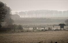 #Nature #landscape #haze