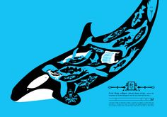 Food Chain Collapse (Whale) screen print. Based on an original illustration from the book A is for Armageddon - www.aisforarmagedon.com via Richard Horne (elhorno.co.uk)