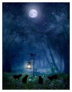 ☆ Familiars gathering under a Full Moon☆ ☆Samhain☆
