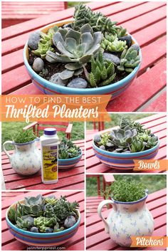 How to turn thrift shop finds into herb planters and succulent gardens - tips and tricks from Jennifer Priest. These planters are upcycled thrift shop finds from Deseret Industries #DIFinds in Fontana CA. Plus tips on keep pets out of your plants, how to add drainage holes to thrifted planters and video tutorial on how to make this succulent garden for your tabletop.