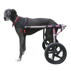Walkin' Wheels Dog Wheelchair 3XLarge Pink - Commercial Bargains Inc. - 1