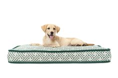 Brown Jordan Dog Bed (shown in Calypso-Forest) Exterior Decoration, Brown Jordan, Holiday Wishes, Outdoor Settings, Dog Bed, Catalog, Textiles, Dogs, Accessories