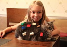 New Kittens On The Blocks: The Top 10 LEGO Cats