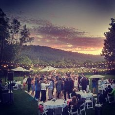 Sean took this last weekend at a wedding we were at.  Mike and I are in the background under the middle umbrella!! :)     Phoneography Challenge: Sonoma Wedding. @photojojo @brit morin