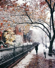 Changing from fall to winter. Winter Love, Winter Wonder, Winter Snow, Winter Walk, Cozy Winter, Beautiful World, Beautiful Places, Beautiful Pictures, Beautiful Streets