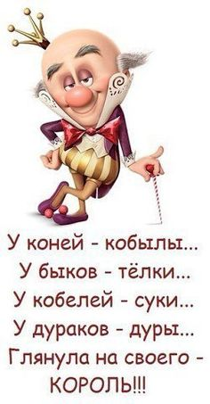 An build an english wheel with our guide that shows you step by step how to assemble it. Sassy Quotes, Funny Quotes, Hr Humor, Russian Humor, Funny Expressions, Clever Quotes, Different Quotes, Just Smile, Adult Humor