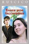 Белая роза бессмертия - 1984 - каша из сказок от грузинской киностудии, сценарий и режиссура так себе