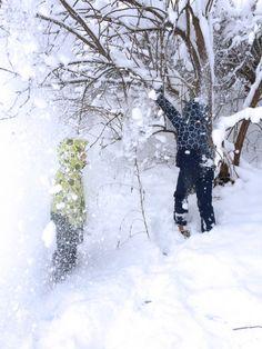Wintererlebnis Schneedusche!