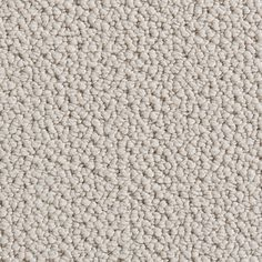 Martha Stewart Carpeting At Home Depot That Looks Like A