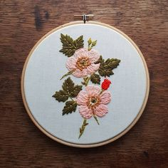 cute, vintage e nature immagine su We Heart It Cactus Embroidery, Hand Embroidery Projects, Hand Embroidery Stitches, Floral Embroidery, Beaded Embroidery, Cross Stitch Embroidery, Embroidery Designs, Cross Stitching, Needlework