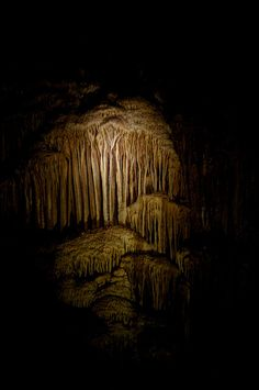 Caves, Margaret River, Western Australia by dilettantiquity, via Flickr