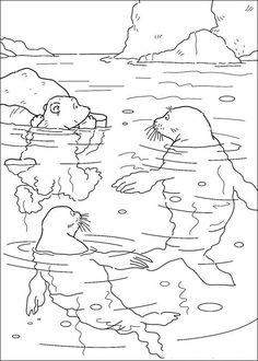 Antarctic animals coloring pages : Antarctic animals coloring pages antarcticanimals antarcticanimalscoloringpages antarcticanimalsfacts antarcticanimalsfigures antarcticanimalsforkids antarcticanimalsimages antarcticanimalslessonplan antarcticanimalslis