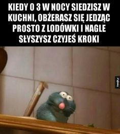 Wtf Funny, Funny Memes, Hilarious, Funny Lyrics, Polish Memes, Truth Of Life, Some Quotes, Haikyuu, Haha