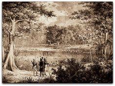 """Aves na lagoa junto ao São Francisco J. B. Spix e K. F. Ph. von Martius .""""Viagem pelo Brasil 1817-1820""""   http://sergiozeiger.tumblr.com/post/110467632688/johann-baptist-ritter-von-spix-09-de-fevereiro-de  Em 1817, Spix e o seu colega Carl von Martius foram convidados para realizar uma expedição ao Brasil, com o objetivo de descrever sua fauna e flora."""