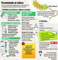 Como prevenir a cólera