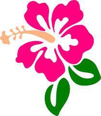 flor de hibisco desenho - Pesquisa Google