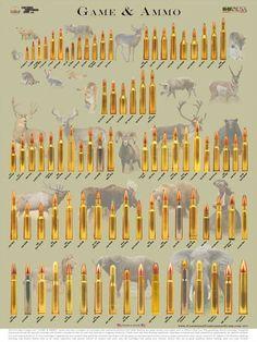 Cartridge Comparison Guide S Photos More