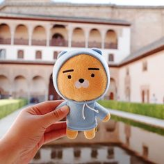 Please check out daily Kakao Friends items in online store. Ryan Bear, Kakao Ryan, Kpop Anime, Feed Insta, Kakao Friends, Hamster, Cute Photography, Line Friends, Cute Cartoon Wallpapers