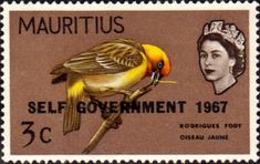 Mauritius 1965 Paradise Flycatcher Bird Fine Mint SG 320 Scott 279 Other Asian and British Commonwealth Stamps HERE!