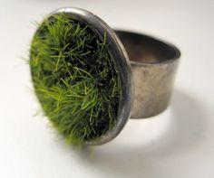 grass ring