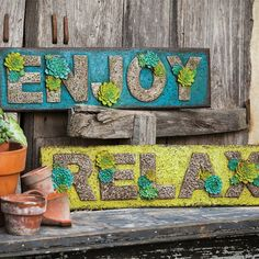 Bring an inspirational touch to your garden or entryway with these charming wall signs, showcasing typographic details and succulent-inspired accents.