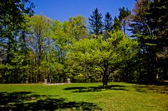 Richfield County Parks 7 #ProjectPark #Nature #Wildlife #Outdoors #Parks