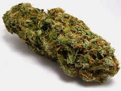 Majority of doctors who responded to worldwide survey said they would prescribe marijuana to a cancer patient