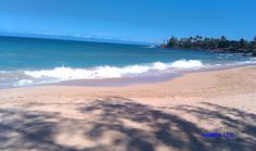 Got it made in the shade..... Paia Bay