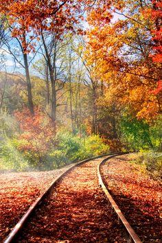 Autumn Railroad Tracks
