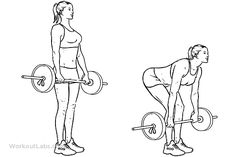 524387950333380173 also My Workouts With Pics also Adductor Magnus besides 3921 Kneeling Concentration Triceps Extension besides Tuffstuff. on cable inner thigh