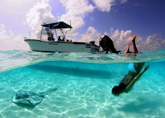 LOVE the Caymans  Sting Ray City, The Grand Cayman Islands