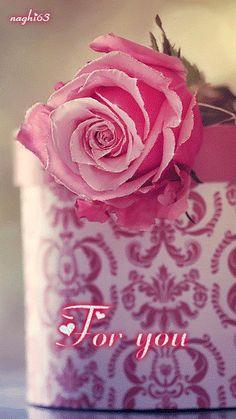 +++ 160831 +++ . . Decent Image Scraps: Animated Roses 2