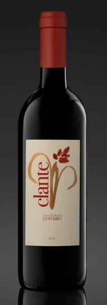 Il #Clante, il dandy di #Pomaio!Quando il Merlot si arrampica elegantemente sull'alberello...