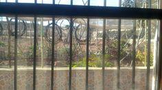 El jardín de mi chalet