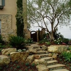 Cypress Olive Trees Stone Farmhouseall In A Lush Tuscan Landscape