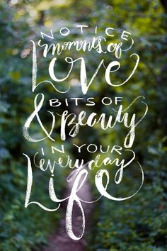 Moments of #love + bits of #beauty. #words #toliveby